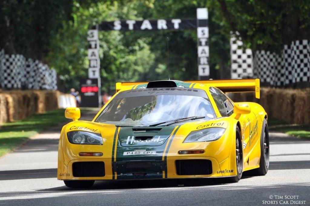 harrdos race.jpg